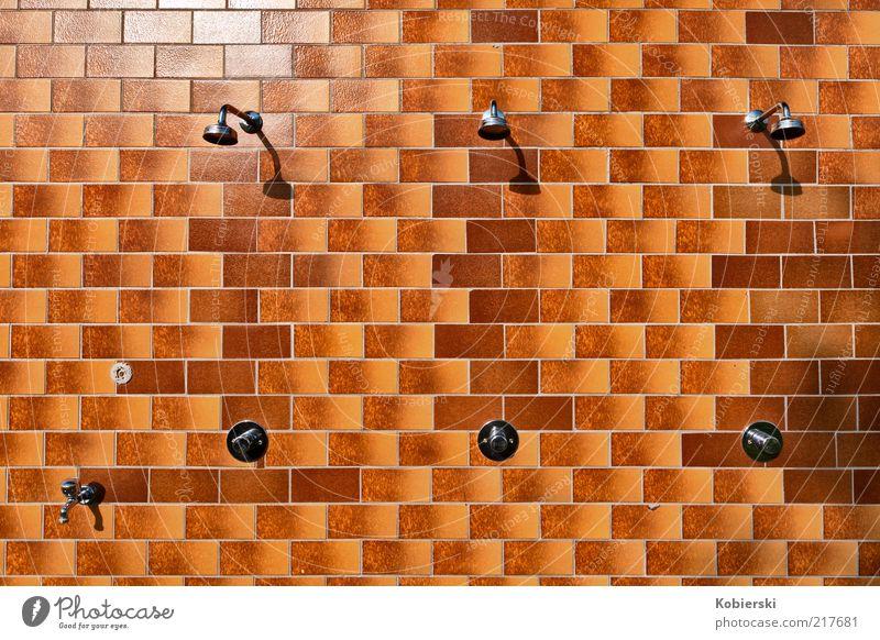 kalte Dusche Dusche (Installation) Duschkopf Metall Freundlichkeit glänzend einzigartig braun gelb Freude Reinlichkeit Sauberkeit Reinheit Inspiration rein