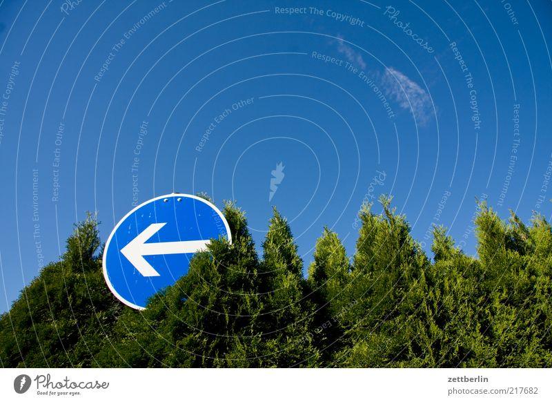 Rechts Himmel grün Sommer Schilder & Markierungen Schriftzeichen Pfeil Zeichen Richtung Hinweisschild Schönes Wetter links zeigen Blauer Himmel Nachbar Hecke Verkehrsschild