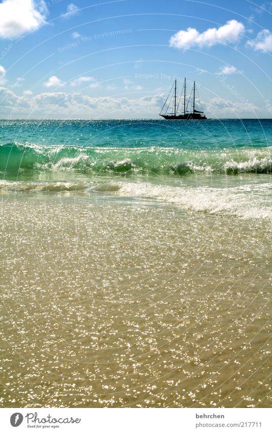 bald ist winter! Himmel Natur blau Wasser Ferien & Urlaub & Reisen Sommer Meer Strand Wolken Ferne Erholung Umwelt Landschaft Freiheit Wärme Küste