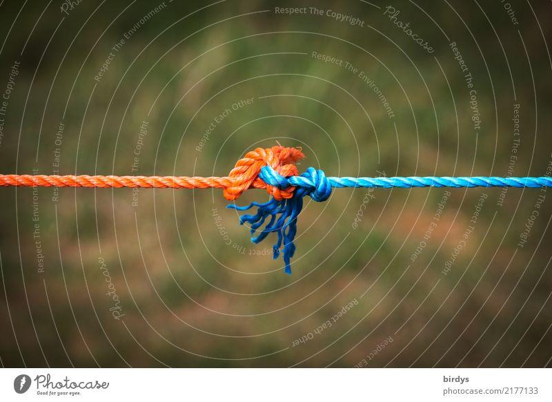 Gemeinsam Spannung aushalten Seil Linie Knoten festhalten einfach Zusammensein positiv blau orange Optimismus Kraft Vertrauen Liebe Treue Solidarität Ausdauer