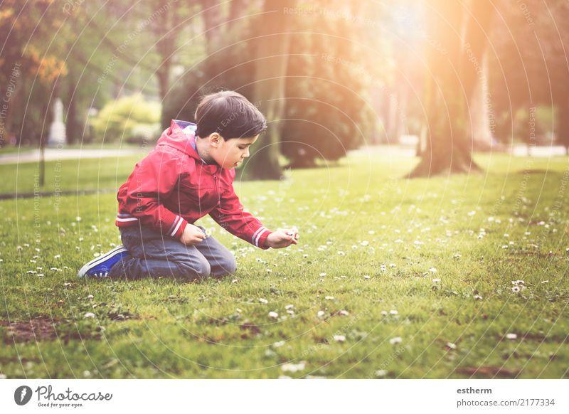 Kind Mensch Natur Pflanze Blume Freude Umwelt Lifestyle Frühling Liebe Gefühle Junge Garten Denken Freizeit & Hobby maskulin