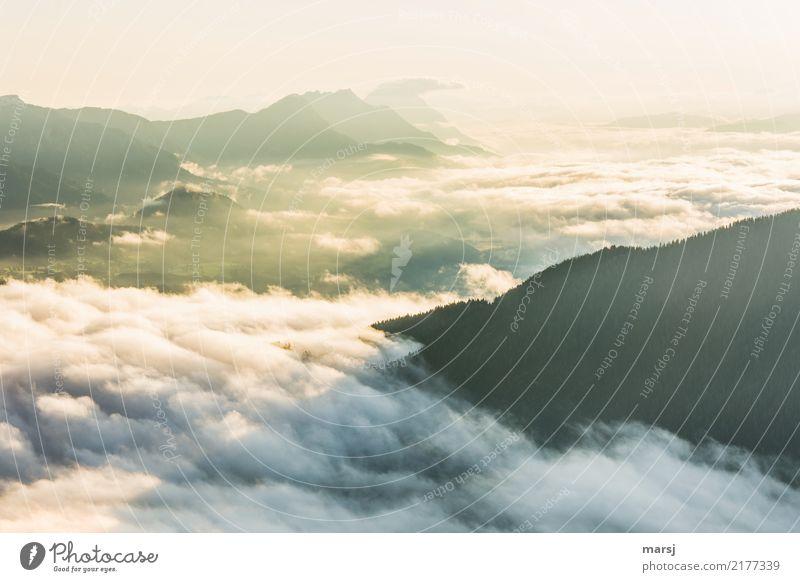 Neuer Tag, neue Woche Sommer Erholung ruhig Ferne Berge u. Gebirge Herbst Freiheit leuchten Nebel Schönes Wetter Hügel Hoffnung Alpen Unendlichkeit Wohlgefühl