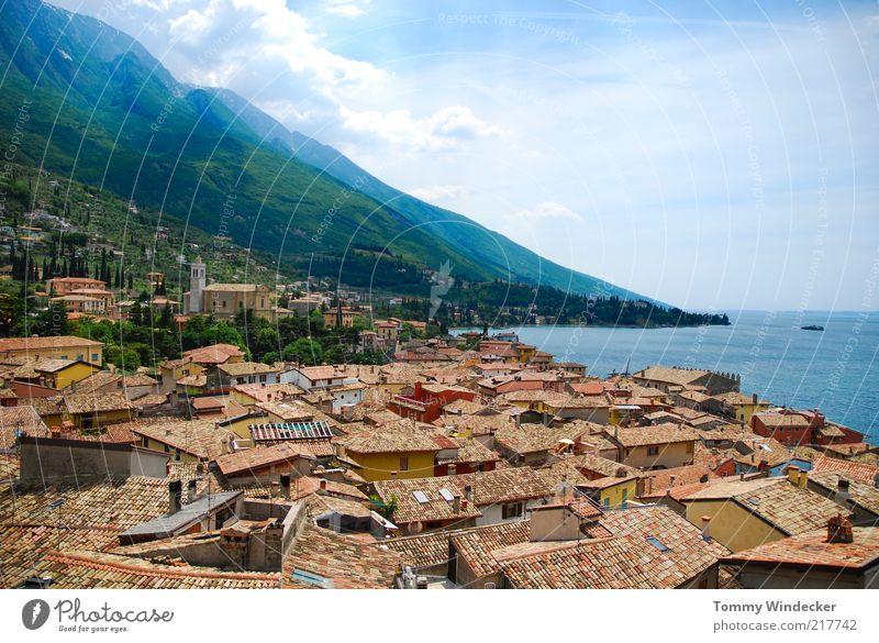 Fernweh Ferien & Urlaub & Reisen Tourismus Städtereise Sommer Sommerurlaub Berge u. Gebirge Landschaft Wasser Küste See Monte Baldo Malcesine Gardasee Italien