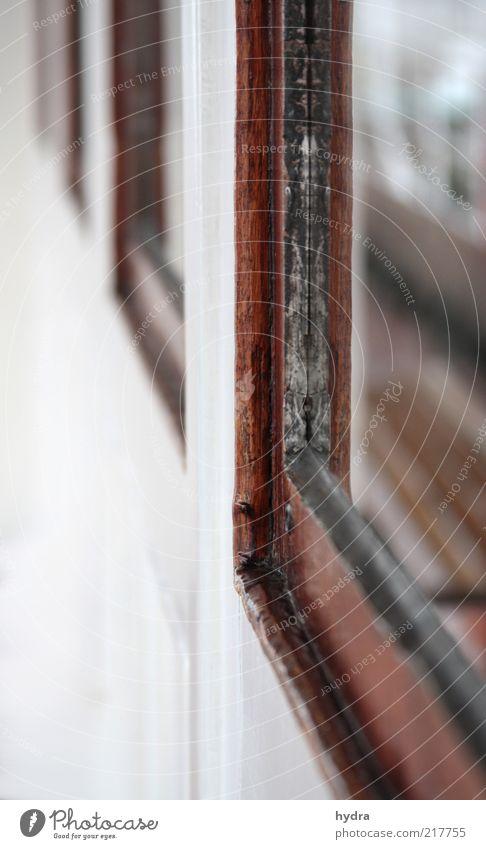 maritime Aussichten alt weiß Einsamkeit Fenster Holz braun Glas ästhetisch historisch Tradition Fensterscheibe Nostalgie Scheibe Schiffsdeck Schiffsplanken baufällig