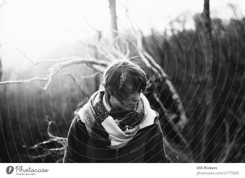 abzweigung Winter wandern feminin Junge Frau Jugendliche 1 Mensch 18-30 Jahre Erwachsene Umwelt Natur Landschaft Herbst schlechtes Wetter Pflanze Baum Wald