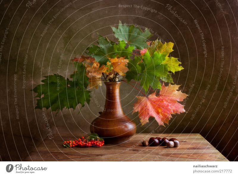 Herbst Kunst Kunstwerk Gemälde Natur Pflanze Ahorn Beeren Vogelbeeren Kastanie Stein Holz alt ästhetisch braun gold grün rot Idylle Stillleben Erntedankfest