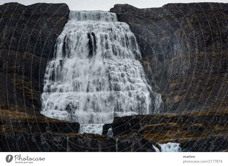 100 m Fallhöhe Himmel Natur weiß Landschaft Wolken Berge u. Gebirge Frühling grau braun Regen Wetter Wind fallen Island Moos Wasserfall