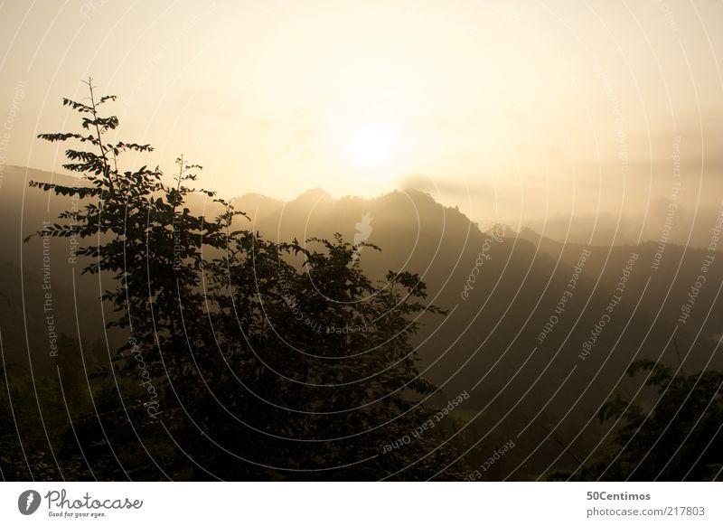 Sonnenaufgang über den Bergen im Norden Thailands Natur Himmel Baum Sonne Blatt Einsamkeit Ferne Berge u. Gebirge Landschaft Stimmung Umwelt Horizont natürlich Gipfel entdecken Schönes Wetter