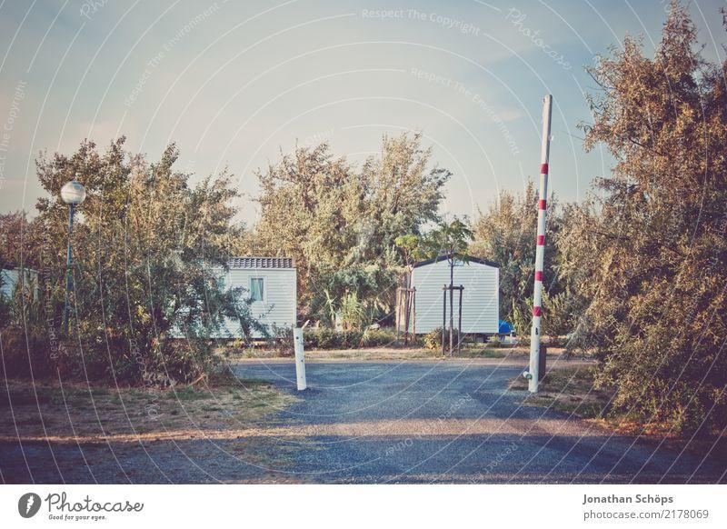 südfranzösisches Feriendorf Ferien & Urlaub & Reisen Sommer Baum Landschaft Erholung Reisefotografie Zufriedenheit ästhetisch Idylle genießen Lebensfreude