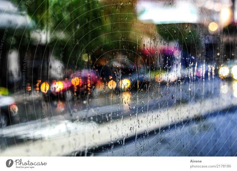 rush shower Wasser Wassertropfen Wetter schlechtes Wetter Unwetter Regen Stadt Verkehr Verkehrsmittel Verkehrswege Autofahren Straße Autoscheinwerfer Glas nass