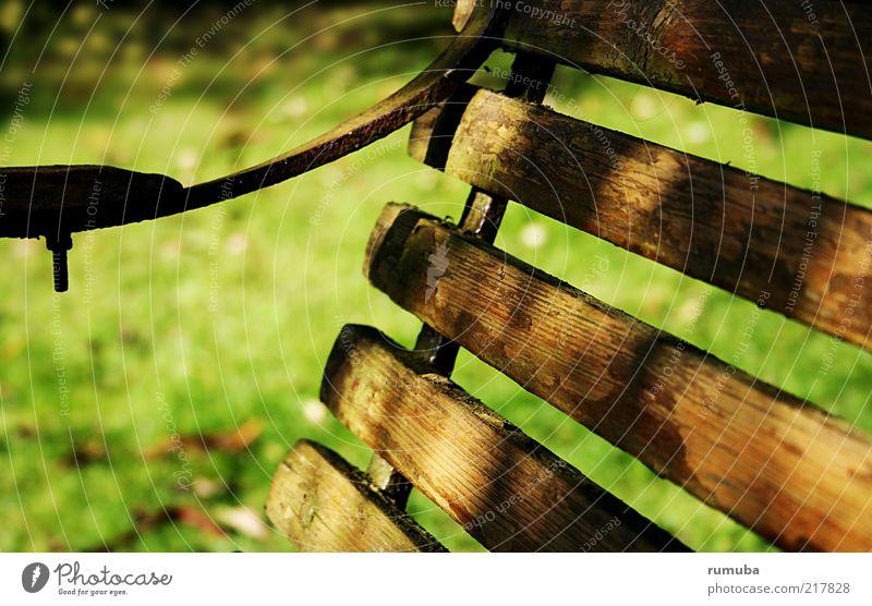 Bank im Park Natur Herbst Schönes Wetter Holz alt einfach braun grün ruhig Gartenbank Parkbank Farbfoto Außenaufnahme Menschenleer Morgen Sonnenlicht