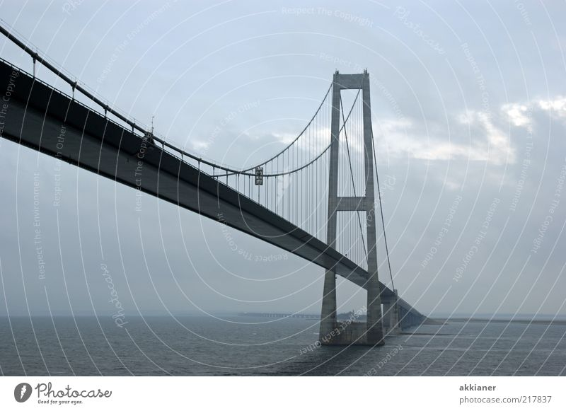 Bis zum Horizont Natur Wasser Himmel Meer Wolken grau hell Nebel Umwelt nass Brücke Verbindung Stahl Bauwerk Stahlkabel Urelemente