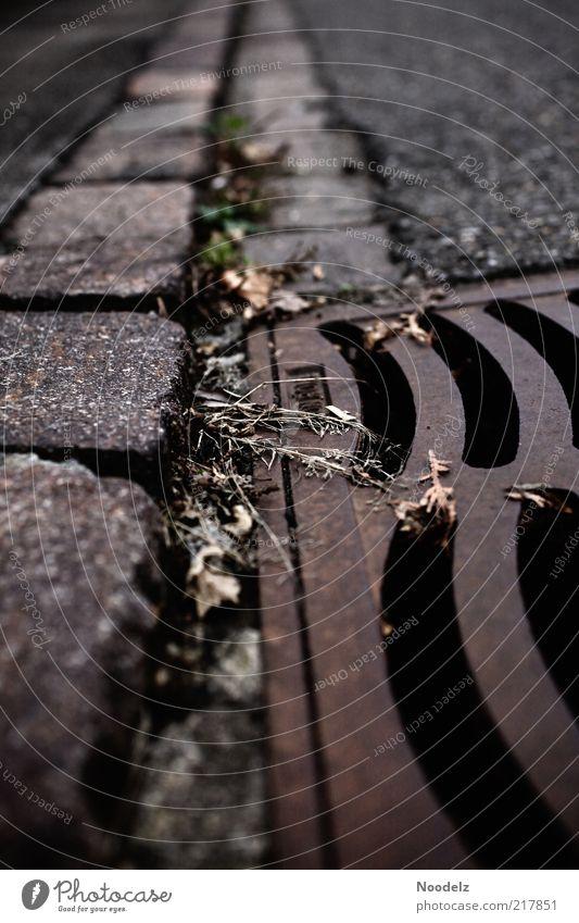 Gratwanderung schwarz Gras grau Stein braun Kraft Metall Beton bedrohlich Asphalt gruselig Stahl Rost Bürgersteig Gully Pflastersteine