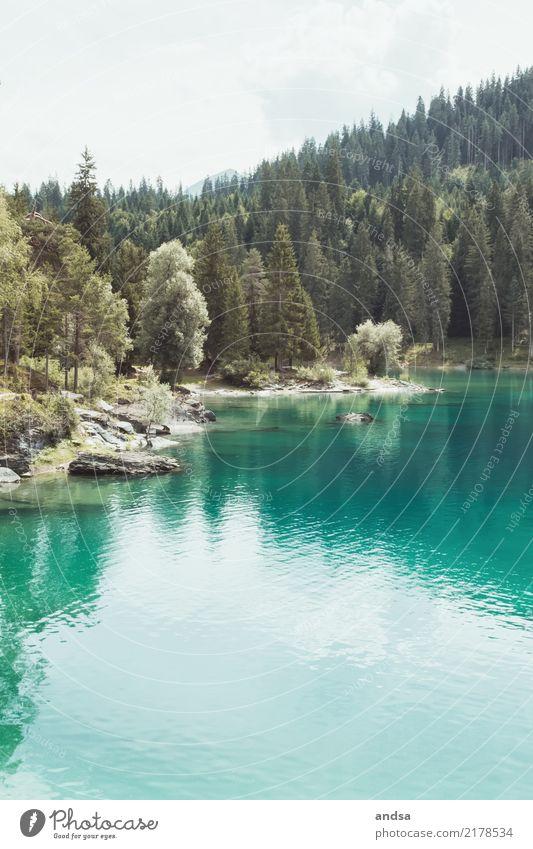 Cauma See in der Schweiz Ferien & Urlaub & Reisen Ausflug Abenteuer Ferne Freiheit Sommer Berge u. Gebirge wandern Natur Landschaft Wasser Himmel Sonne Frühling