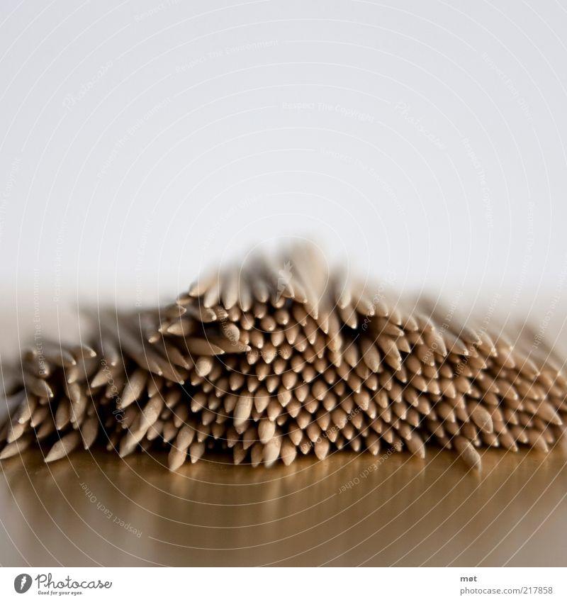 pieks Holz stachelig Holzspieß Spieß Holzstab Farbfoto Menschenleer Textfreiraum oben Unschärfe Schwache Tiefenschärfe Hintergrund neutral Haufen Anhäufung