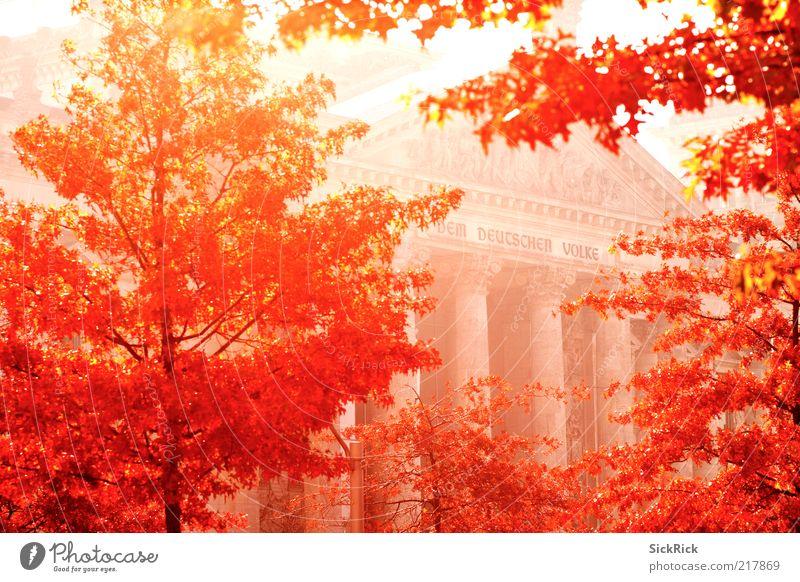 ...berlin autumn Kultur Natur Herbst Baum Berlin Bauwerk Gebäude Architektur Fassade Sehenswürdigkeit Wahrzeichen Deutscher Bundestag Wärme rot Politik & Staat