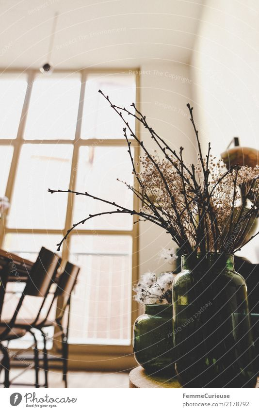 Home_11 Blume Fenster Lifestyle Stil braun Design hell Häusliches Leben Dekoration & Verzierung Glas Stuhl Wohnzimmer gemütlich getrocknet edel Loft