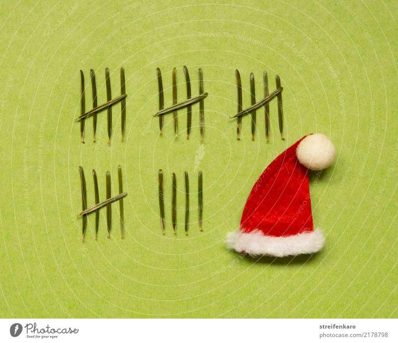 Vorfreude - Nikolausmütze begleitet von 24 Tannennadeln, die einen Adventskalender nachahmen Winter Feste & Feiern Weihnachten & Advent Kind Pflanze Mütze