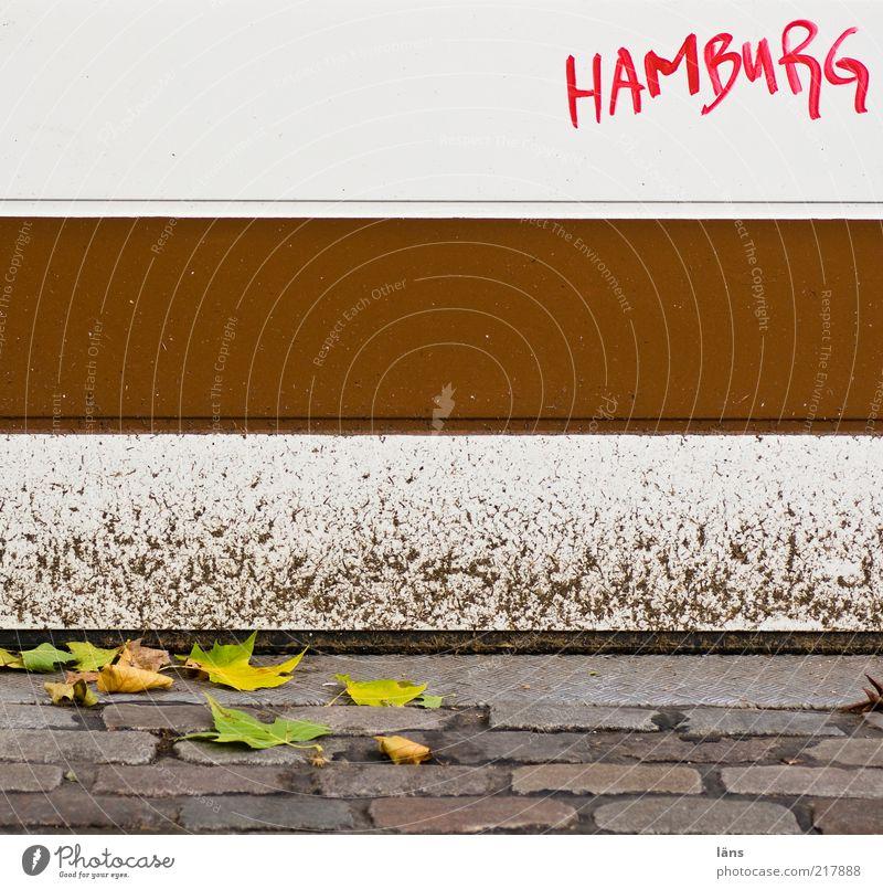 Hamburg ist braun-weiß weiß Blatt Herbst Stein Wege & Pfade Graffiti braun Metall dreckig Hamburg geschlossen Schriftzeichen Kopfsteinpflaster Lack Kultur Herbstlaub