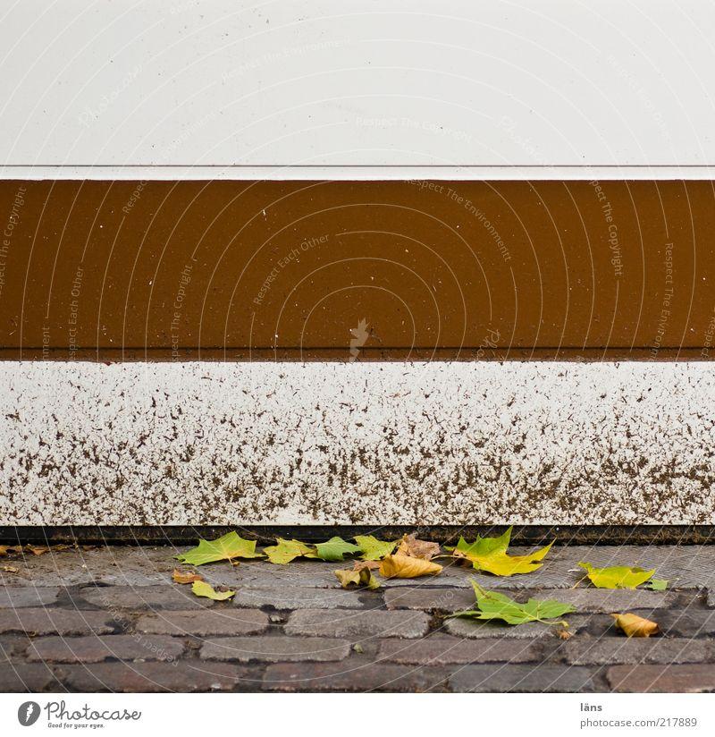 braun-weiß Herbst Blatt Wege & Pfade Stein Metall dreckig Kopfsteinpflaster Garagentor Einfahrt geschlossen Lack Schanzenviertel Farbfoto Außenaufnahme