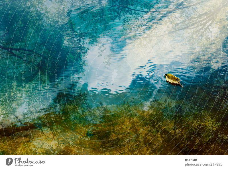 Waldsee Umwelt Natur Wasser Himmel Herbst Blatt Ast herbstlich Teich See Wasseroberfläche fantastisch schön Gelassenheit geduldig ruhig Perspektive Umweltschutz