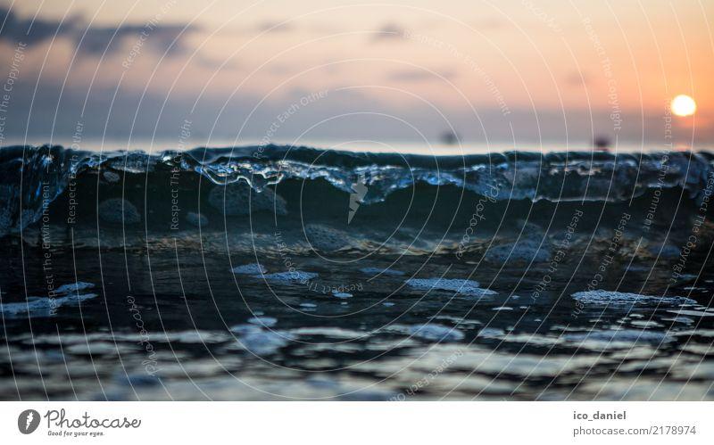 perfekte Welle Lifestyle harmonisch Zufriedenheit Schwimmen & Baden Ferien & Urlaub & Reisen Tourismus Ausflug Sommer Sommerurlaub Sonne Strand Meer Wellen