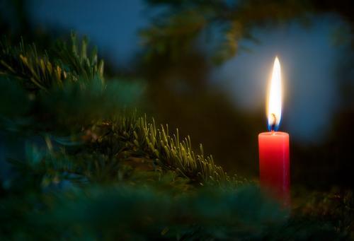 ...ein Lichtlein brennt Feste & Feiern festlich Festbeleuchtung Kerzenschein Kerzenflamme Kerzenstimmung Weihnachtsbaum Tannenzweig Tannennadel