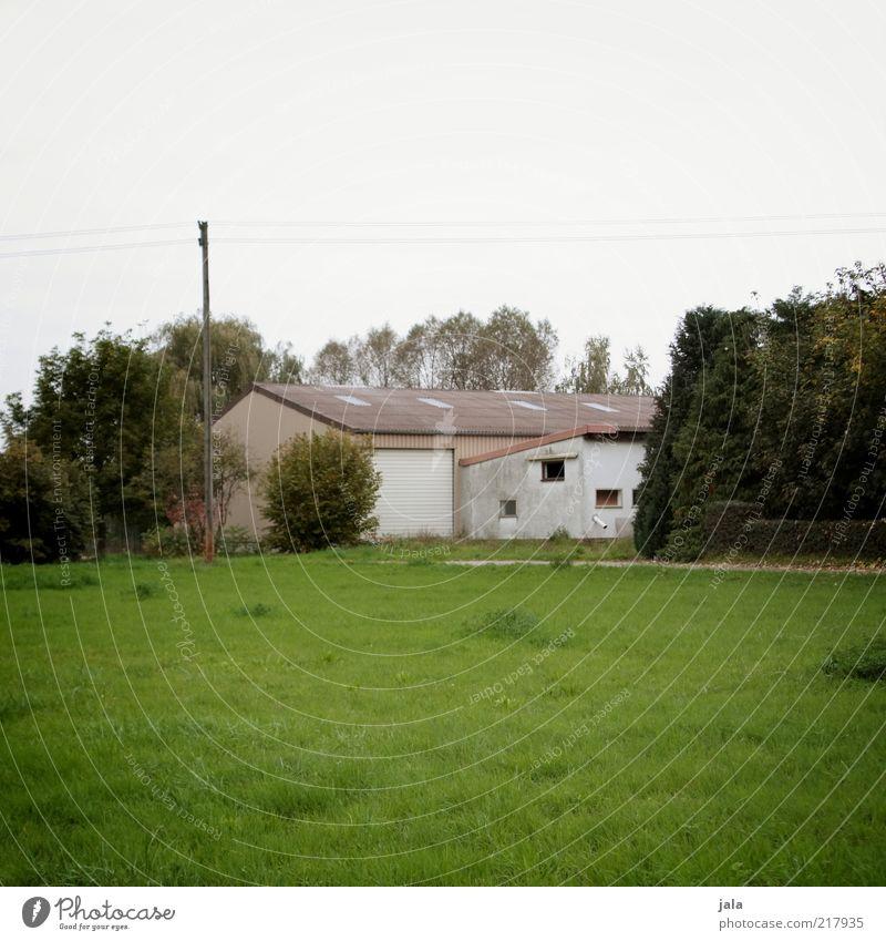 unsere kleine farm Natur Himmel Herbst Pflanze Baum Gras Sträucher Haus Bauwerk Gebäude Bauernhof trist grau grün weiß Farbfoto Gedeckte Farben Außenaufnahme