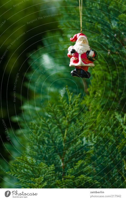 Weihnachtsmann Weihnachten & Advent grün Feste & Feiern Tradition Weihnachtsbaum Schmuck hängen Christentum Weihnachtsdekoration Ritual Baumschmuck Konifere