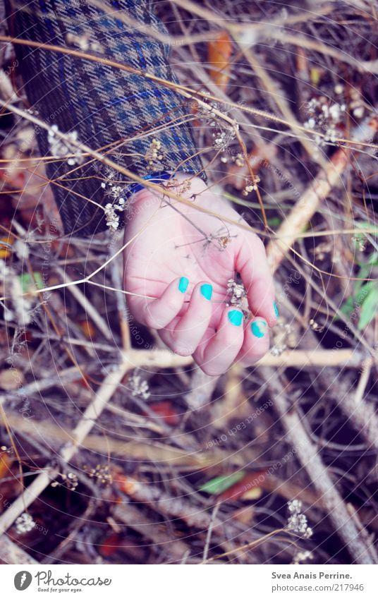 tod im wald. Jugendliche Hand Pflanze Tod feminin Herbst Gefühle Holz Traurigkeit Stil träumen dreckig Arme liegen Finger Coolness