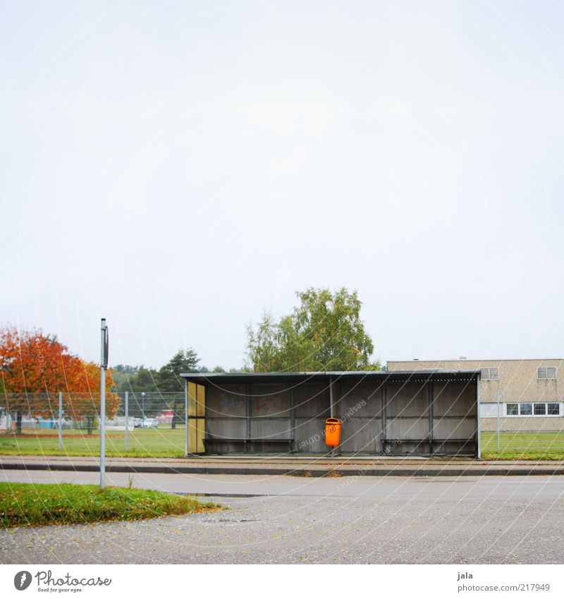 bus stop Himmel Herbst Pflanze Baum Gebäude Bushaltestelle Wartehäuschen Verkehr Öffentlicher Personennahverkehr Straße trist Müllbehälter Farbfoto