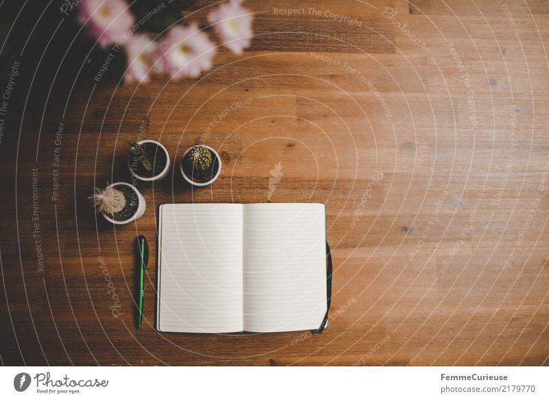 Home_15 Lifestyle Stil Design Häusliches Leben Notizbuch schreiben Kaktus Holztisch Blüte Vogelperspektive leer liniert Kugelschreiber grün rosa gemütlich