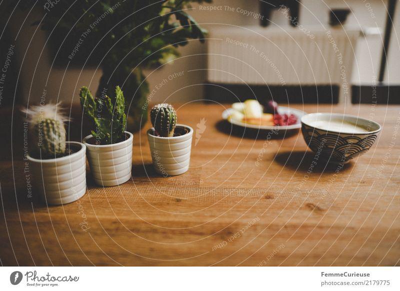 Home_42 Haus Einfamilienhaus Häusliches Leben Dekoration & Verzierung Kaktus Holztisch Kaffeetasse Heizkörper Farbfoto Innenaufnahme Textfreiraum unten