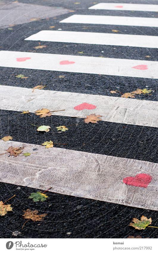 Herzlicher Überweg weiß schön Blatt schwarz Straße Herbst Graffiti Glück Wege & Pfade Herz rosa Romantik Asphalt Verkehrswege Verliebtheit Teer