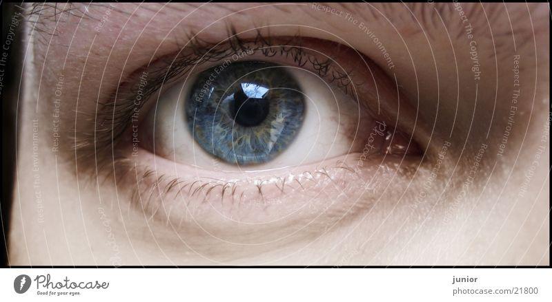 mein auge Selbstportrait Mann Auge Regenbogenhaut Gesicht