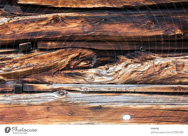 Nicht alles Holz harmonisch Erholung ruhig Bauwerk Mauer Wand Holzwand alt außergewöhnlich authentisch Zusammensein einzigartig braun nachhaltig vergangen