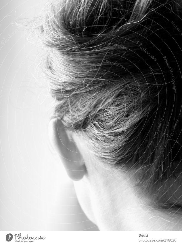 to pin up one's hair Mensch Frau Jugendliche schön Erwachsene feminin Haare & Frisuren Kopf Stil 18-30 Jahre ästhetisch Ohr brünett langhaarig Stolz Rückansicht