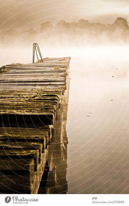 am ende der zeit Umwelt Natur Urelemente Wasser Herbst Nebel Seeufer Mecklenburg-Vorpommern Holz Fernweh ruhig Morgen Holzbrett Leiter Wasserspiegelung Steg