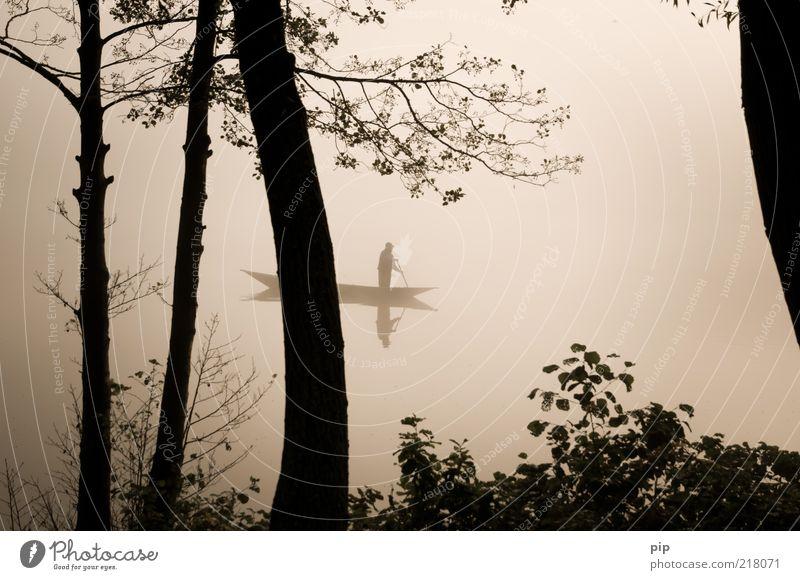 trübes treiben Mann Erwachsene Arme 1 Mensch Wasser Herbst Nebel Baum Ast Blatt Seeufer Ruderboot Wasserfahrzeug Paddel Bewegung Unendlichkeit trist