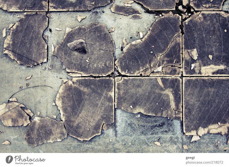 mein Bad Stein Beton alt dreckig hässlich kaputt trist braun grau verwüstet Fliesen u. Kacheln Bodenplatten Wand Bodenbelag Farbfoto Menschenleer Quadrat