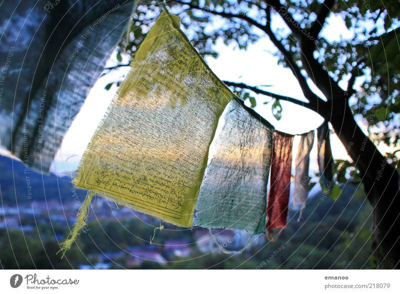 wind prayer Natur Baum gelb Freiheit Bewegung Landschaft Religion & Glaube Wind Schnur Gegenlicht aufhängen Mitgefühl flattern mehrfarbig Schatten Licht