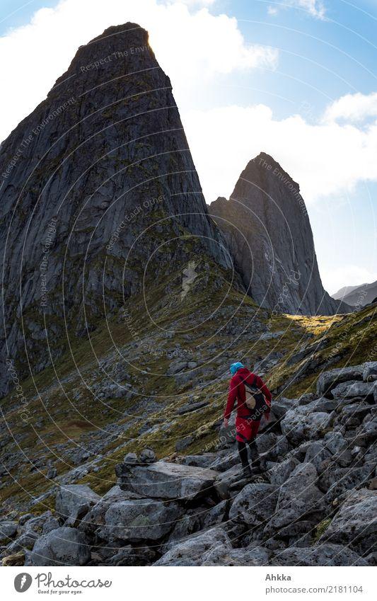 Gipfelsturm, Norwegen sportlich Abenteuer Ferne Freiheit Berge u. Gebirge wandern 1 Mensch Urelemente Felsen Lofoten außergewöhnlich dunkel fantastisch