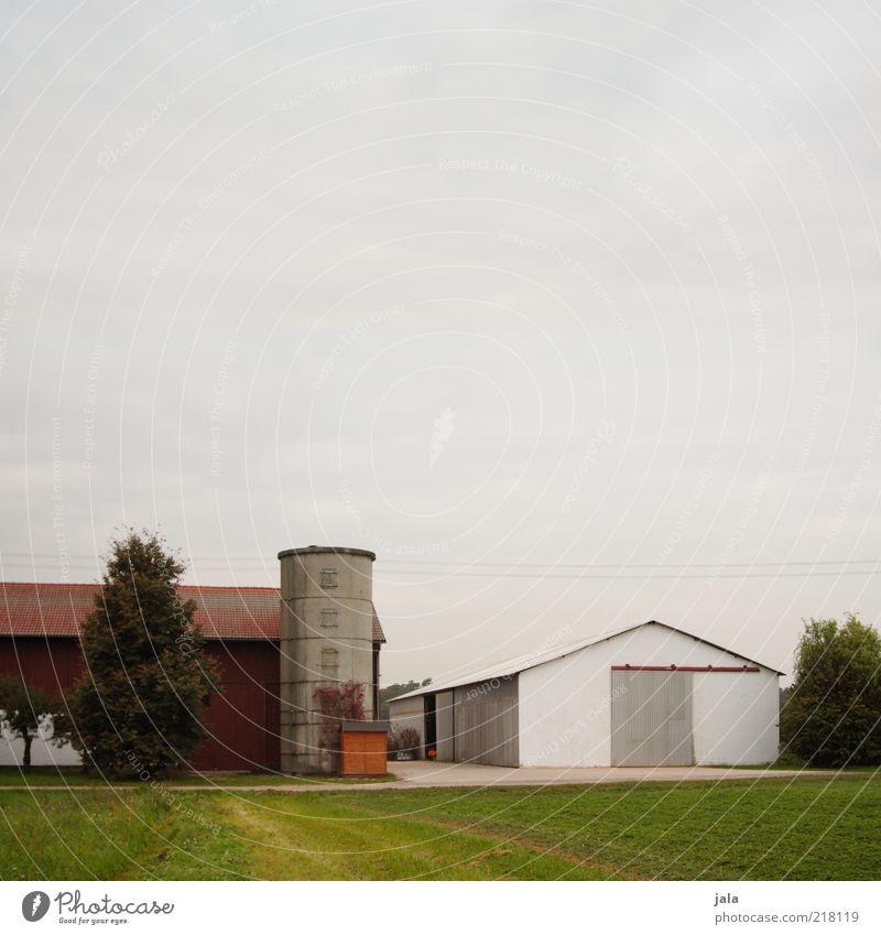 landwirtschaftsbetrieb Himmel Baum Gras Feld Dorf Bauwerk Gebäude Halle Bauernhof Silo trist Farbfoto Außenaufnahme Menschenleer Textfreiraum oben