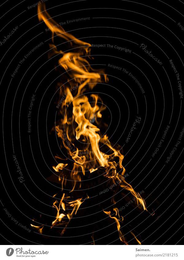 Flammen Feuer brennen schwarz verrotten heiß Hitze Farbfoto Lagerfeuer leuchten scheinen