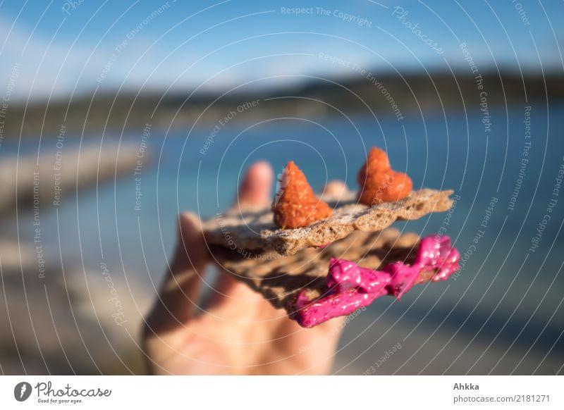 Gesundes Knäckebrot mit Verzierung vor einer Sommerlandschaft Farbe Freude Essen Leben Gesundheit lustig Familie & Verwandtschaft Zufriedenheit Ernährung