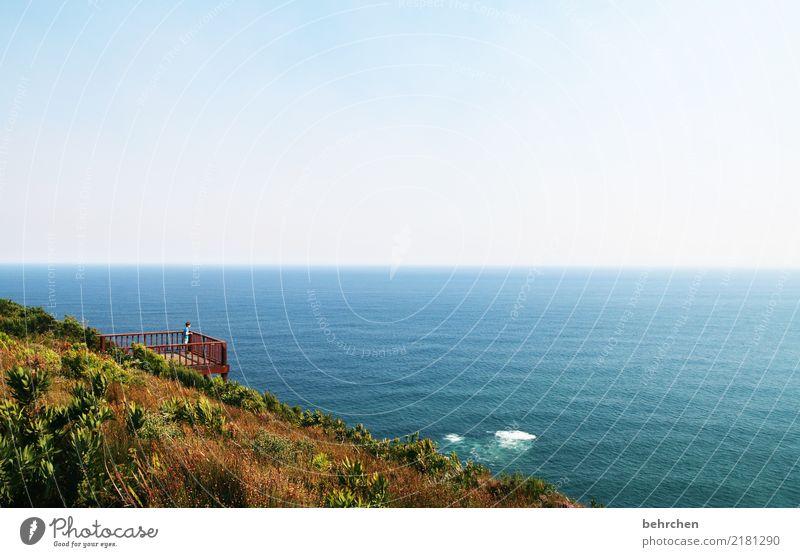 weite aussichten Kind Himmel Natur Ferien & Urlaub & Reisen Landschaft Meer Ferne Küste Gras Junge außergewöhnlich Tourismus Freiheit Ausflug Horizont Wellen