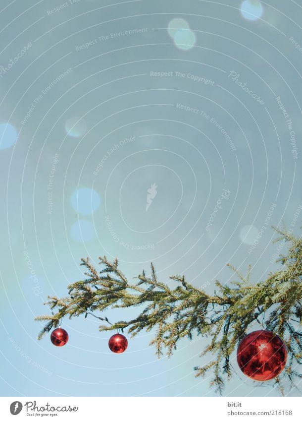 KITSCH ME UP II Weihnachten & Advent schön rot Winter Schnee Feste & Feiern glänzend Glas Romantik Weihnachtsbaum Kitsch Kugel Idylle Tanne trashig