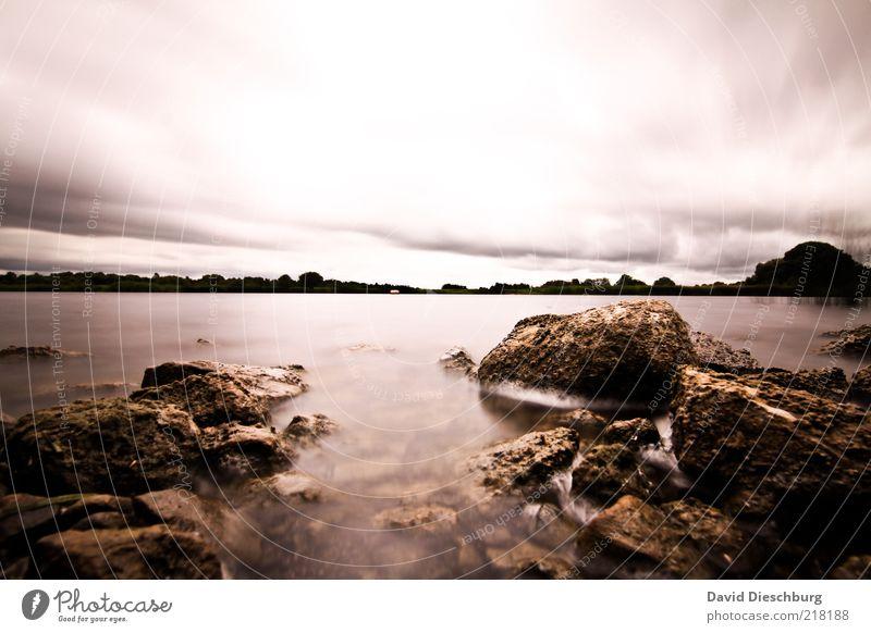 Shannonriver in storm Natur Landschaft Wasser Himmel Wolken Gewitterwolken Herbst schlechtes Wetter Pflanze Felsen Flussufer braun weiß Stein Republik Irland