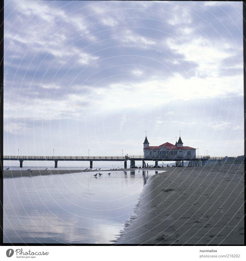 Zinnowitz Ferien & Urlaub & Reisen Tourismus Ferne Sommer Strand Meer Insel Umwelt Natur Wolken Schönes Wetter Ostsee Brücke Seebrücke Erholung Blick alt