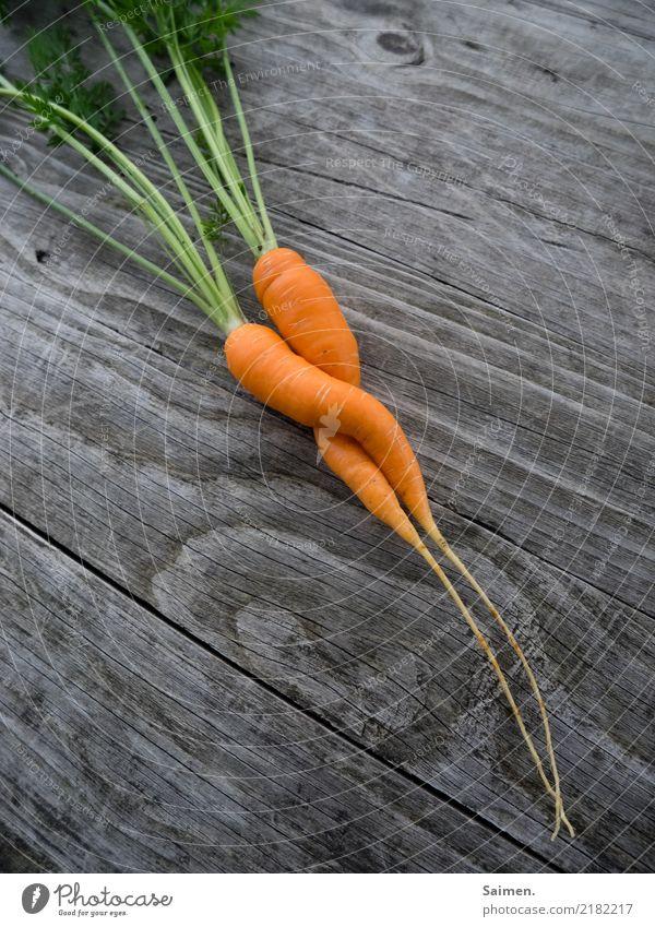 Zwei Möhren liebe Garten gärtnern Gemüse holz Linien und Formen Grün Gewächs gesunde ernährung Stadt Essen Nahrung zusammen zwei zweisamkeit Korkenzieher paar